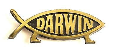 Darwin Fish Fridge Magnet(Gold)