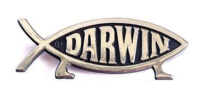 Darwin Fish Fridge Magnet (Silver)